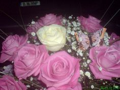 From my friends, pink roses