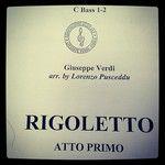 """""""#rigoletto#giuseppeverdi#verdi#tuba#tubaplayer#powpow#unpaunpa"""" (X-Prox II) - 16/09/2013 - natuzzzzzz"""