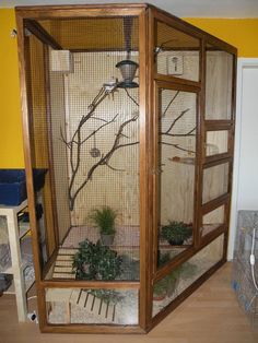 Finch Aviary - Image Only #aviariesideas #howtobuildanaviary