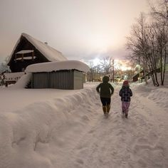 The end of school holidays and another scorching week ahead. Take me back to cooler climes! Niseko Japan, School Holidays, Back To School, Powder, Cool Stuff, My Love, Friends, Outdoor, Inspiration