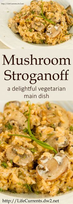 Mushroom Stroganoff - a delightful vegetation main dish that your ...