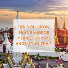 """Everything that you need to know about """"City of Angels"""" 👉🏽blog.glocalzone.com👈🏽 #glocazoned #bangkok #cityofangels #bangkokhotel #bangkoktravel #bangkokhostel #passinpassport #dametravelers #travelwithintention #beautifuldestinations #visualambassador Bangkok Hotel, Bangkok Travel, Need To Know, Did You Know, Friday Facts, City Of Angels, Hostel, Everything, Fair Grounds"""