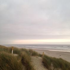 Image de aesthetic, beach, and nature Stephen Shore, Nature Aesthetic, Edward Hopper, All Nature, The Dunes, Land Scape, Strand, Mother Nature, Places To Go