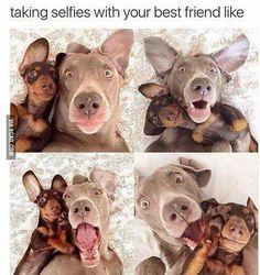 BFF Selfies