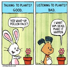Talking to plants good, listening to plants bad, Shoebox Blog: http://www.shoeboxblog.com/  Shoebox Blog on Facebook: http://www.facebook.com/Shoeboxblog