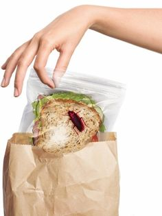 LUNCHBUGS sandwich bags by Fred