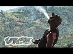 King of Cannabis, Documentary About Dutch Cannabis Entrepreneur Arjan Roskam