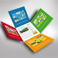 Multicolor Brochure Design Inspiration
