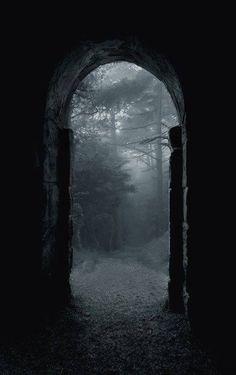 Gloomy doorway gateway forest