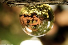Look into my crystal ball: Topsy-turvy pictures show the world refracted through glass