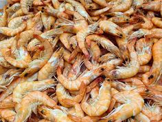 5 Mouthwatering Roasted Shrimp Recipes from the Barefoot Contessa News China, Roasted Shrimp, Barefoot Contessa, Protein Snacks, Shrimp Recipes, Fish And Seafood, Fall Hair, Diet, News Update