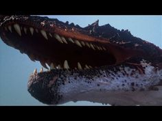 The BEST of Discovery's Dinosaurs - YouTube