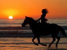 Sentimientos a caballo