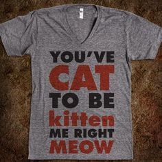 punny cat shirt -to all my cat ladies! @Mandy Bryant Lintner @Danielle Lampert David @Jenn L Doerr