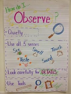 I will use this in my classroom and have my student work independently and than with others to identify problems and implement a solution.  My students will use problem, solution, and decision making to come up with ways that they can observe in several different experiments.
