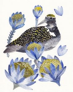 Plover and Protea 8 x 10 Archival Print by unitedthread on Etsy, $20.00