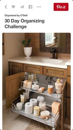 Storage Under Sink Idea