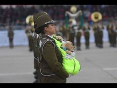 YouTube Backpacks, Youtube, Bags, Fashion, Female Leaders, Armed Forces, Military, Handbags, Moda