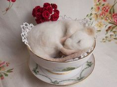 Sleeping needle felted white mouse in a vintage by MrsPlopsShoppe ...