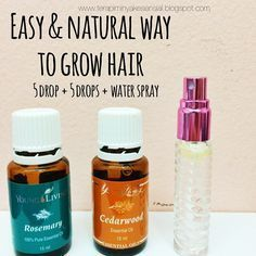 essential oil blend Young Living hair loss - Google Search