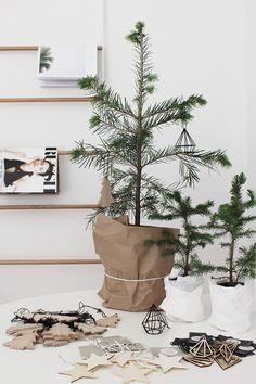Kerstboom in zak