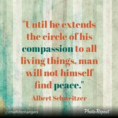 #motivation #inspiration #affirmation #mantra #meditation #wholeness #compassion