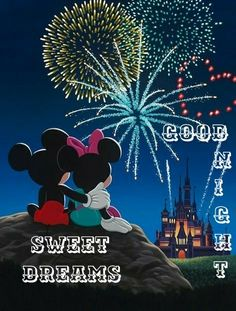 Wishing everyone a Happy New Year's Eve! I hope you all have a wonderful last day of Here's to a great ✨ Mickey Mouse Quotes, Mickey Minnie Mouse, Disney Images, Disney Pictures, Christmas Morning, Christmas Time, Disney New Year, Disney Fireworks, Funny New Year