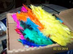 Colored Feathers For Crafts Brand New