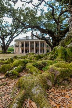 Staying at the Oak Alley Plantation in Louisiana | The Blonde Abroad