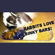#binkybars #rabbit #treats #UK
