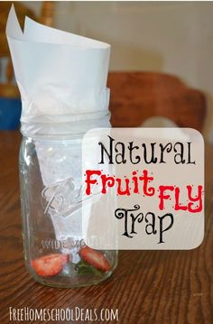 How to Make a Homemade Fruit Fly Trap -- EASY and it works!!