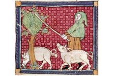 In #medieval times, pigs were kept as meat animals, often in a type of extensive #husbandry that included #foraging in #forests and on common grounds. People thus had much more contact with live pigs than we do today – this could be dangerous, and even deadly.  There were multiple accounts of #pigs eating children. From the #13thcentury, lawsuits could in theory be filed against the porcine perpetrators – this usually resulted in a death sentence for the pig.