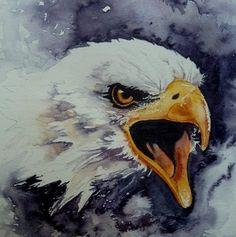 Watercolor Bird, Watercolor Paintings, Eagle Images, Eagle Drawing, Eagle Painting, Eagle Art, Robot Concept Art, Wildlife Art, Acrylic Painting Canvas