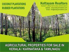 Kottayam Realtors Agricultural Properties Rubber Plantation Coconut Plantation