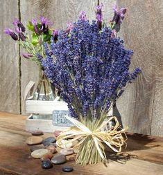 Lavender Bouquet of Royal Velvet Lavender flowers makes a lovely, fragrant gift or home accent. The beautiful blue bouquet has approximately 450 dried Royal Velvet flowers and is tall tied with a raffia bow. Lavender Bouquet, Blue Bouquet, Lavender Flowers, Dried Flowers, Beautiful Flowers, Lavender Crafts, Lavender Cottage, Lavender Tea, French Lavender