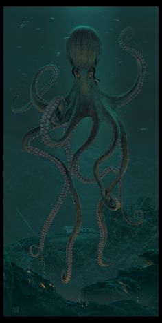 Giant Octopus by wallace