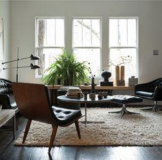 6 plants in interiors
