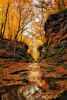 Pewit's Nest, Wisconsin Dells, Baraboo, Wisconsin; photo by Matt Anderson