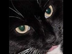 ▶ Oda al gato- Pablo Neruda - YouTube