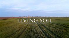 The Living Soil: A Documentary… Best Email, Organic Gardening, Farmer, Homesteading, Outdoor Gardens, Documentaries, Environment, Outdoor Ideas, Health