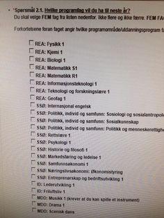 Stort programfagstilbud på Lambertseter vgs med 26 fag å velge mellom. Nå har Vg1-elevene på ST valg fem fag å få smakebiter på og ID-elevene valgt seg to.