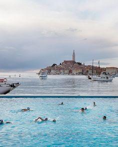 Blick auf die Stadt Rovinj - Kulinarische Reise: Istrien - 1 - [ESSEN & TRINKEN]