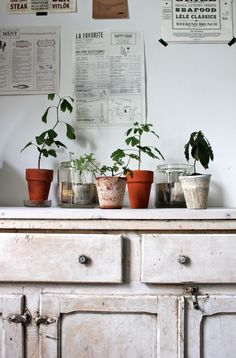 indoor potting shed decor