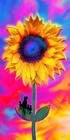 Sunflower Sunrise