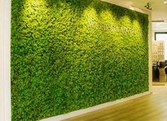 Image result for green wall