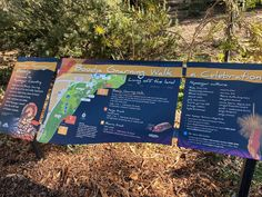 800m, Kings Park, Perth, Swan, Trail, Survival, Knowledge, Walking, River