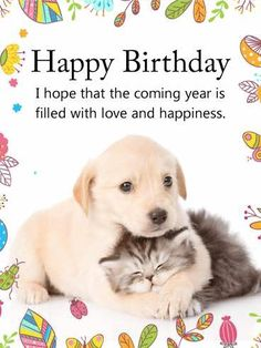 Send Free Cuddling Dog & Cat Happy Birthday Card to Loved Ones on Birthday & Greeting Cards by Davia. Dog Birthday Quotes, Happy Birthday Puppy, Happy Birthday Animals, Free Birthday Card, Happy Birthday Pictures, Happy Birthday Messages, Cat Birthday, Happy Birthday Greetings, Animal Birthday