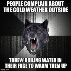 people whining about the cold weather meme | Insanity Wolf Meme | PEOPLE COMPLAIN ABOUT THE COLD WEATHER OUTSIDE ...What is people afraid of the wind hitting their face?!