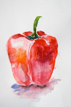 Watercolor Vegetables | Stock image of 'Watercolor illustration of red pepper'