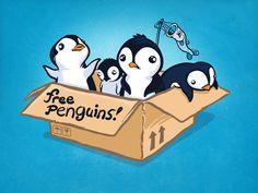 Free Penguins! Art Print